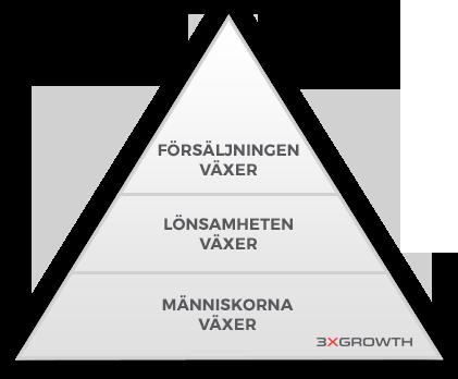 3xgrowths affärspyramid