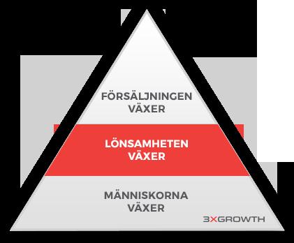 3xgrowth lönsamheten växer